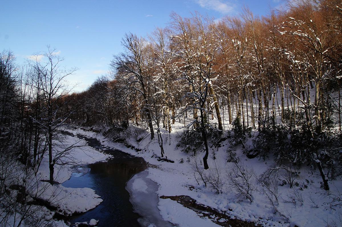 Гуамское ущелье, Краснодарский край, зима 2016