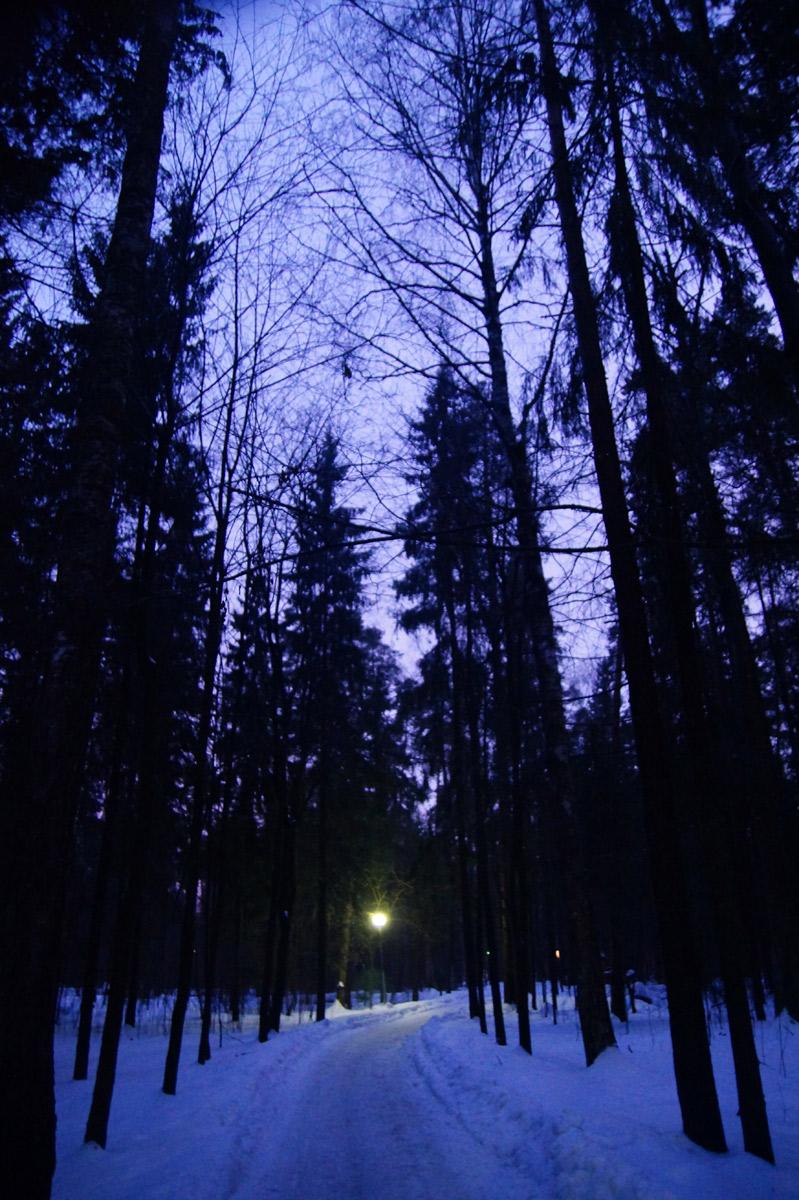 Черноголовка, Подмосковье, весна 2016