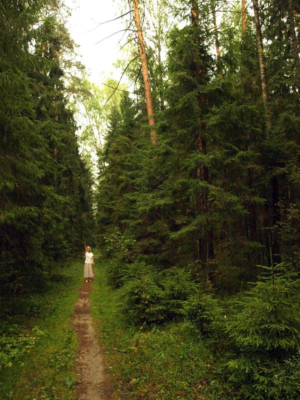 В темном лесу.   Черноголовка, лето 2010