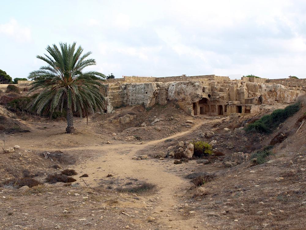 Пальма и могилы. Пафос, Кипр, осень 2014