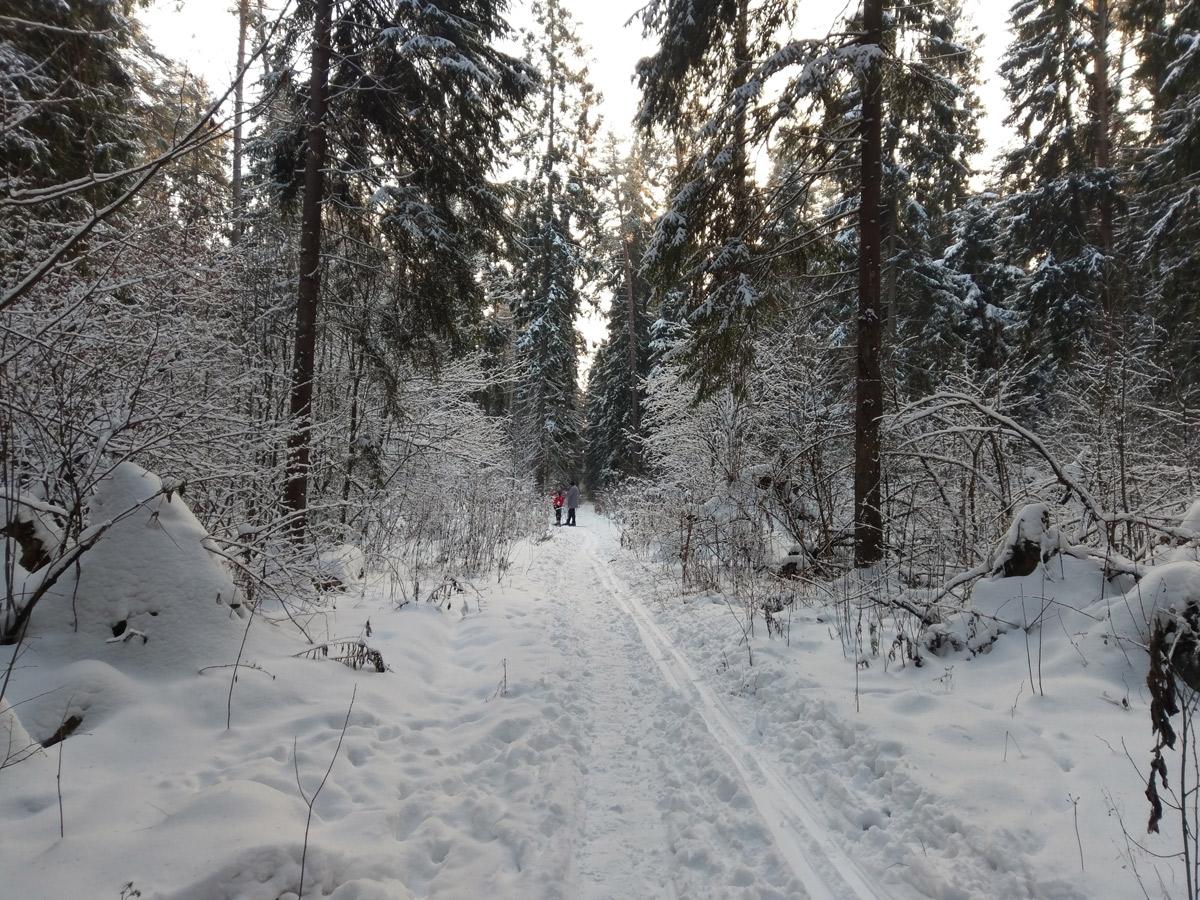 Нахабино, Подмосковье, зима 2018