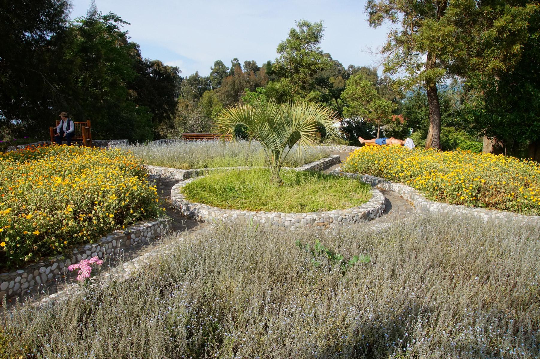 Ботанический сад, Батуми, Грузия, весна 2018