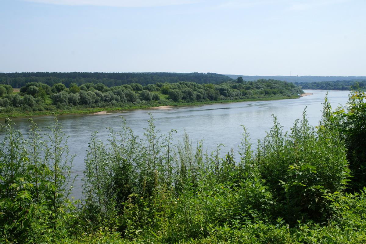 Таруса, Калужская область, лето 2017