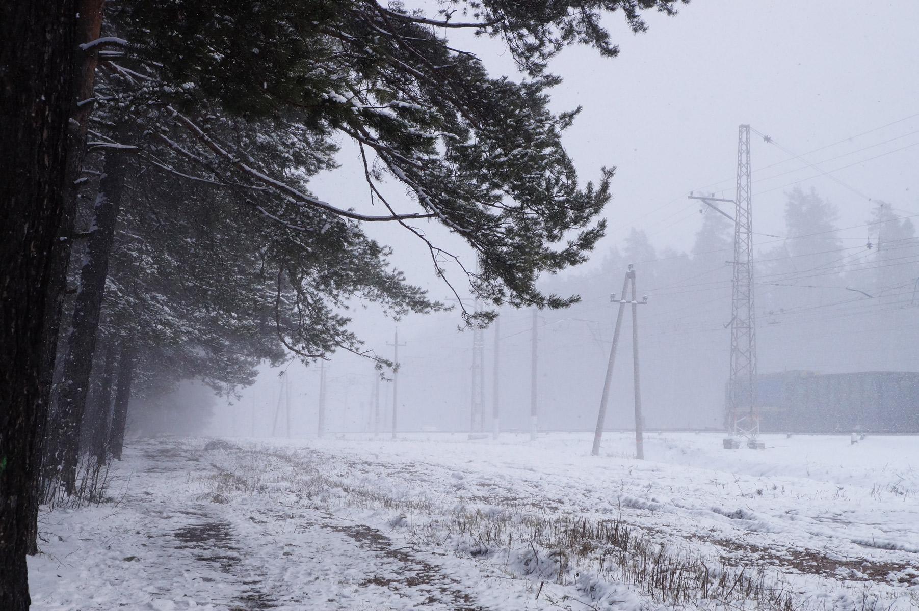 Нахабино, Подмосковье, весна 2020