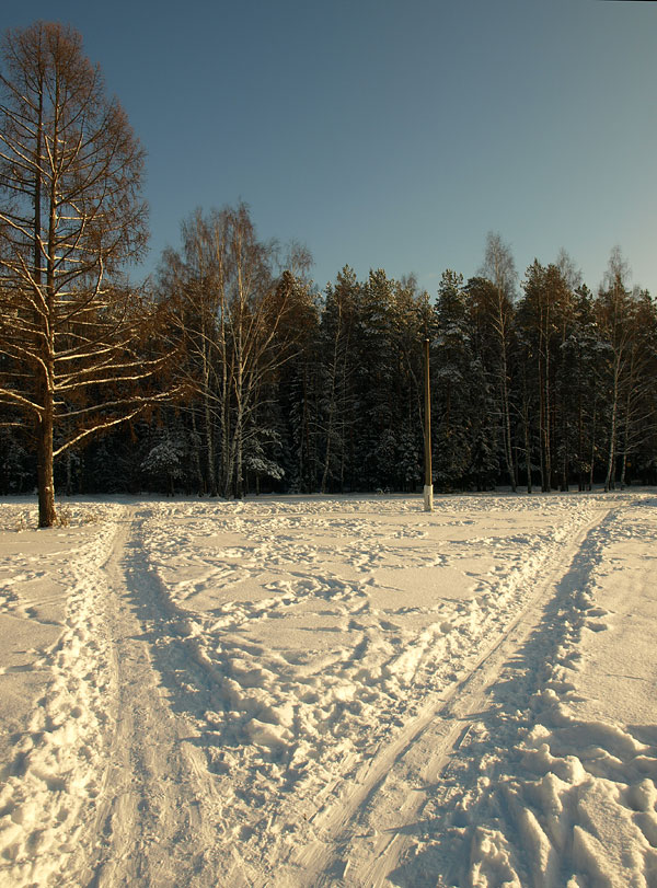 Ослепительная развилка. Черноголовка, зима 2009