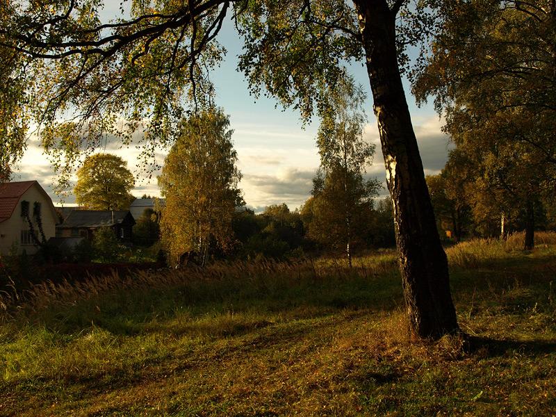 Вечер золотой осени... Нахабино, осень 2009