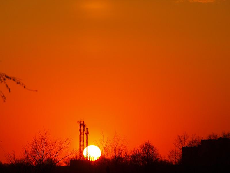 Оранжевое небесное море... Нахабино, весна 2009