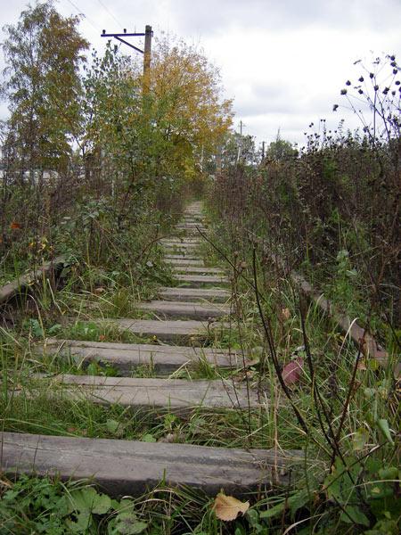 Гнилые шпалы и трава Нахабино, осень 2006