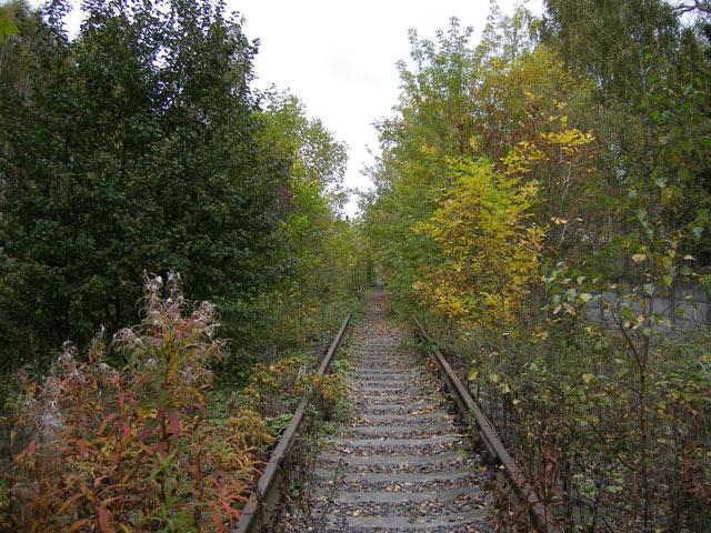 Дорога в осень... Нахабино, осень 2006