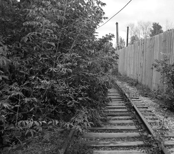 Наступление природы... Нахабино, осень 2006