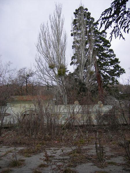 Под сенью серых небес Ливадия, Крым, зима 2008
