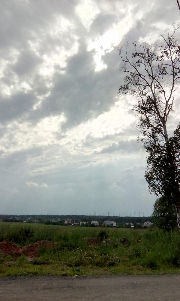 Подмосковье, лето 2016