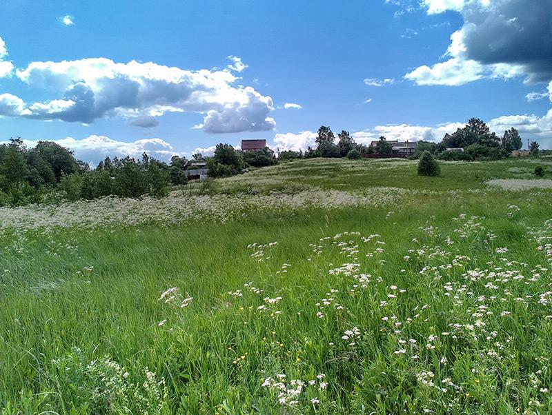 Истра, лето 2014