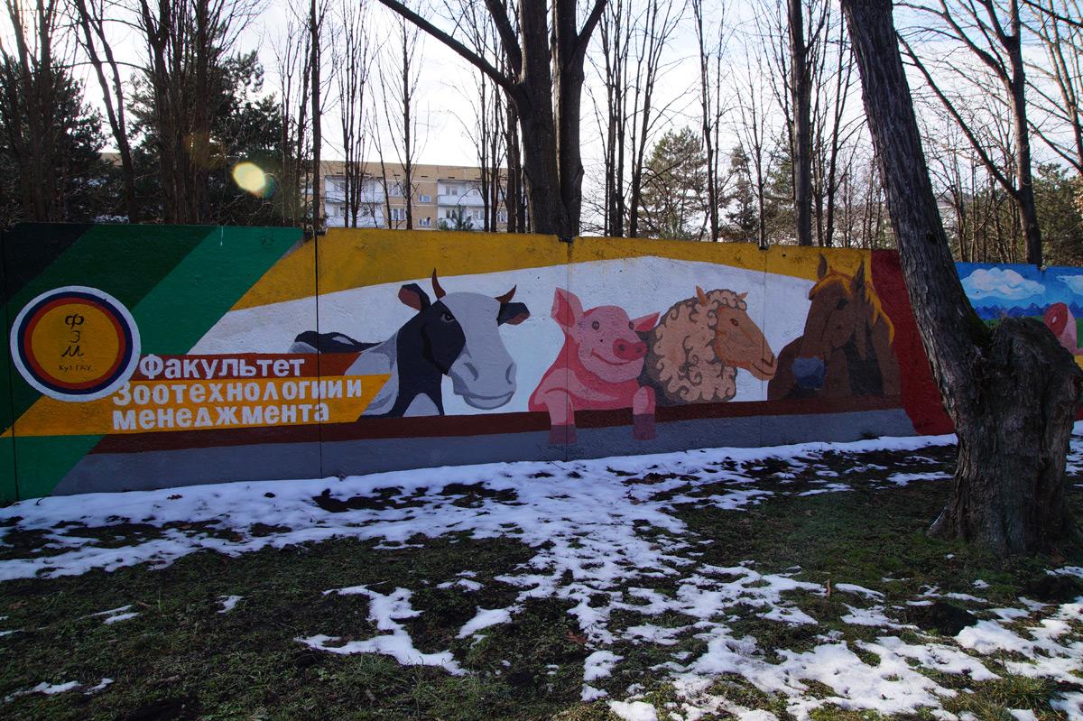 Ботанический сад, Краснодар, зима 2016