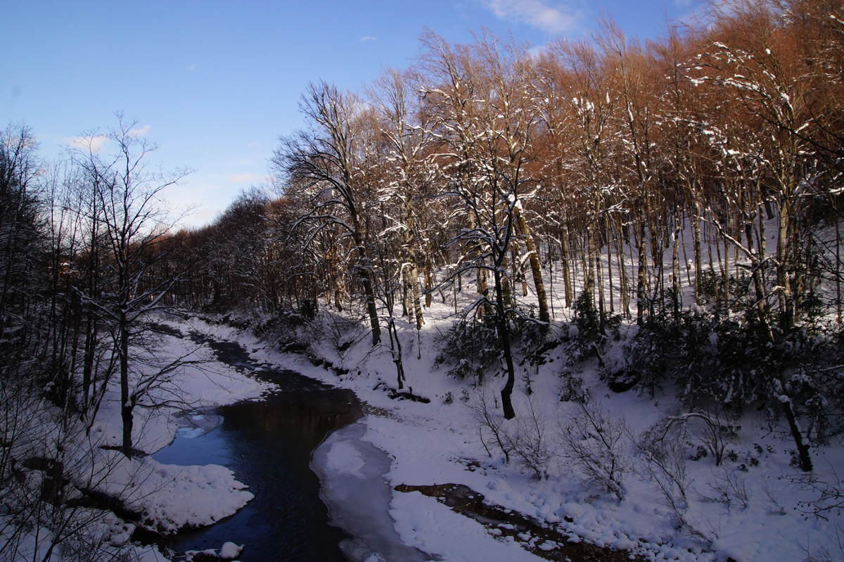 Гуамка, Краснодарский край, зима 2016