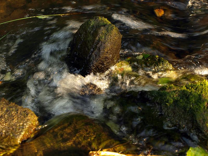 Камень среди потоков. Нахабино, лето 2010