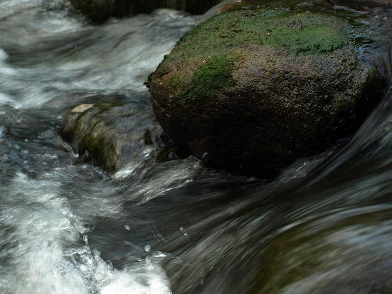 Поток и камень. Нахабино, лето 2010