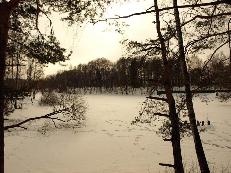 Замерзшая заводь... Нахабино, весна 2010