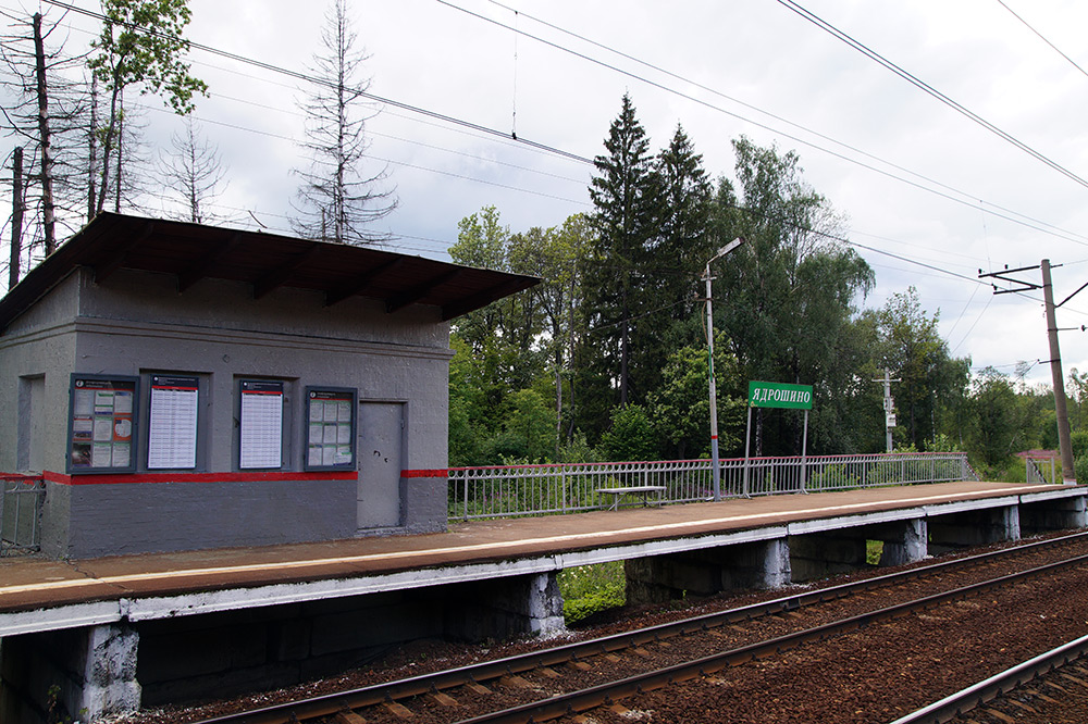 Ядрошино, Подмосковье, лето 2015