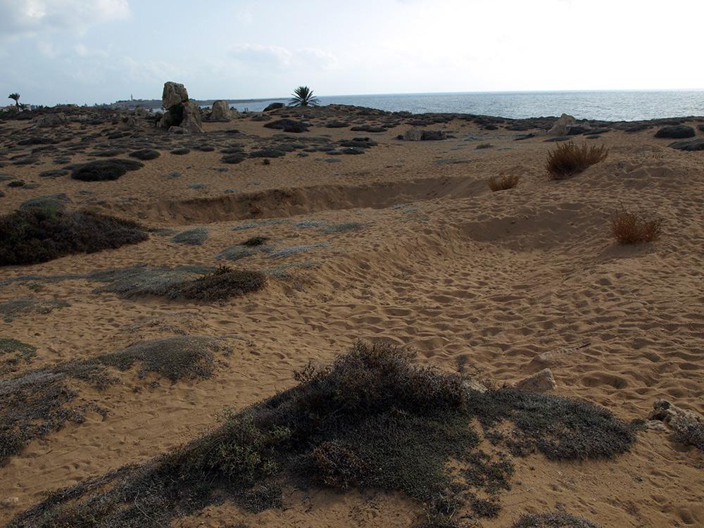 Раскопки? Или новые могилы? Пафос, Кипр, осень 2014