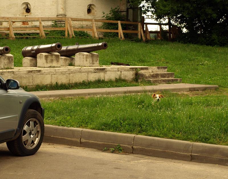 Автомобиль, пушки и собака:)  Новый Иерусалим, лето 2010