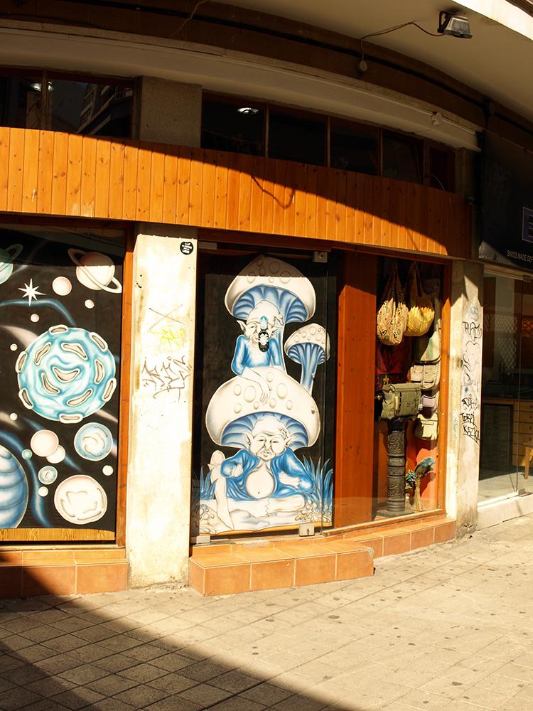 Волшебные грибы.:)   Никосия, Кипр, осень 2014
