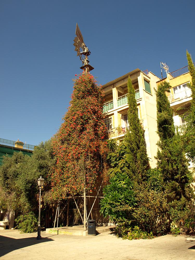 Ветряк в цветущем плюще.   Никосия, Кипр, осень 2014