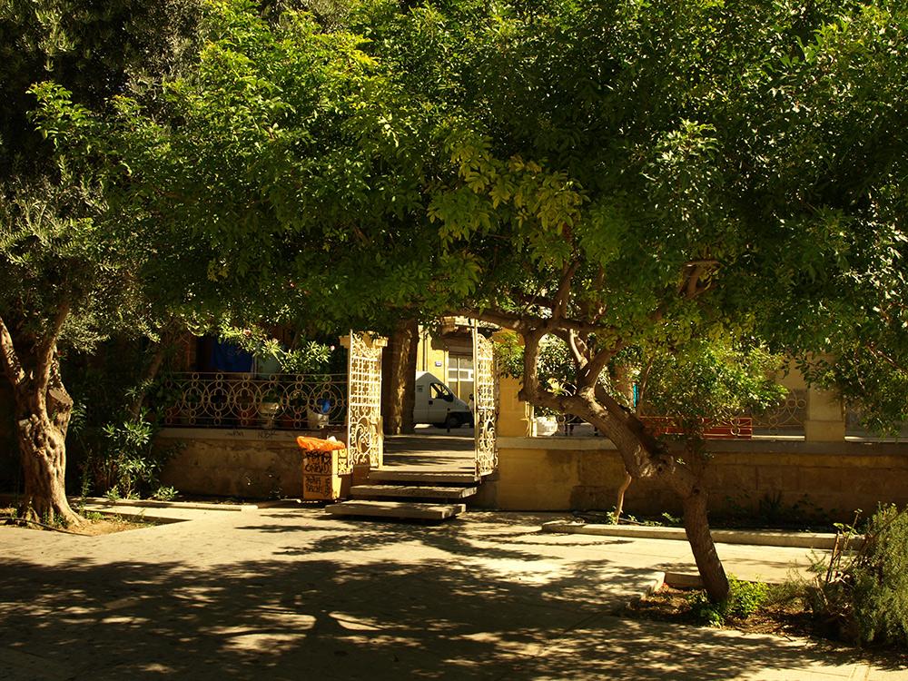 Зелень и кованые ворота.   Никосия, Кипр, осень 2014