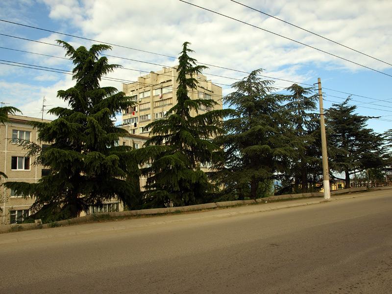 На троллейбусной остановке на улице Октябрьская. Алушта, Крым, весна 2010