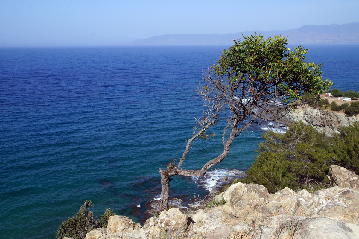 полуостров Акамас, Кипр, весна 2017