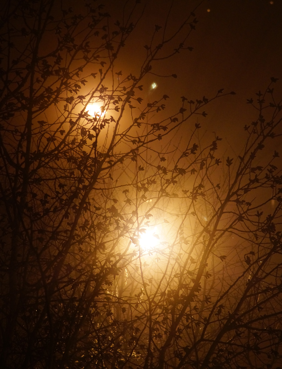 Апрельские туманы.  Нахабино, Подмосковье, весна 2017