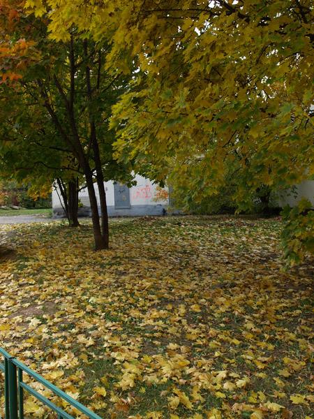 Россыпи листьев... Москва, осень 2008