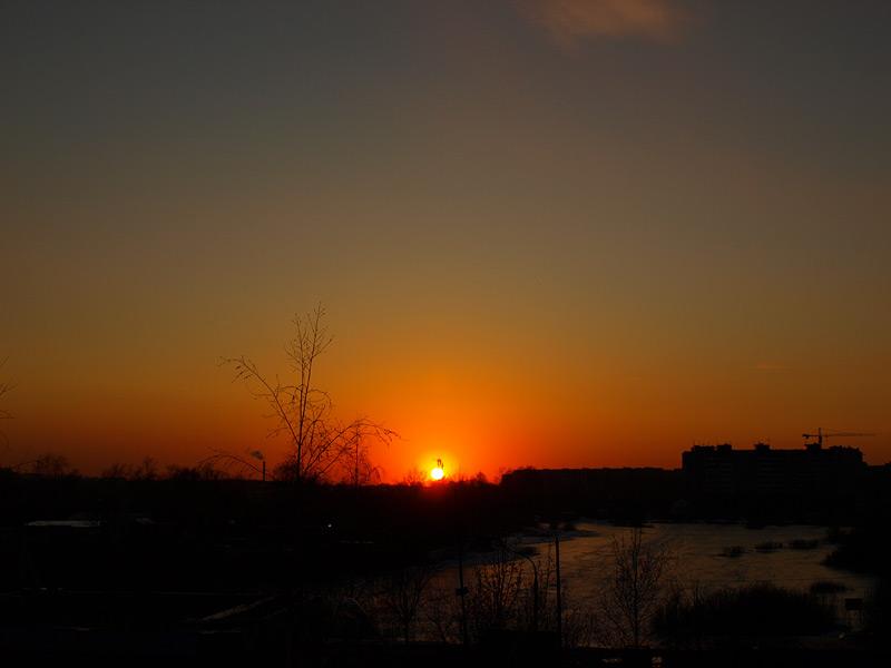 Апельсин солнца. Нахабино, весна 2009
