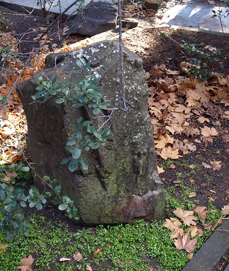 Камень и прошлогодняя листва... Алушта, зима 2009