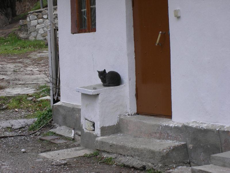 На страже Алушта, Крым, зима 2008