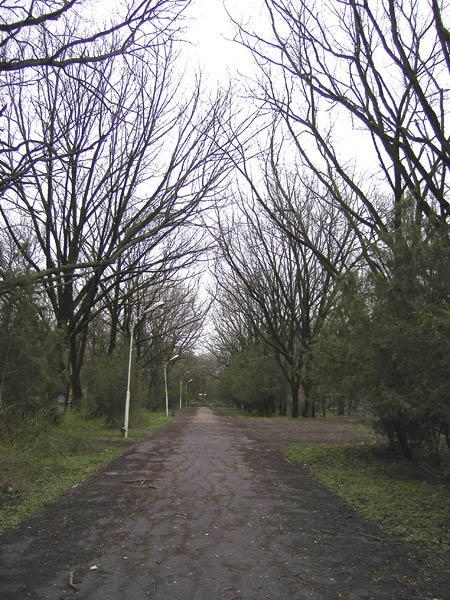 Царство летних теней... Краснодар, весна 2007