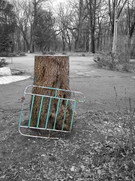 Вымирание природы и цивилизации... Краснодар, весна 2007