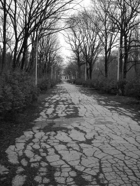 Аллеи в другие миры... Краснодар, весна 2007