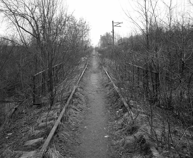 Мост через речушку Окрестности Нахабина, осень 2006